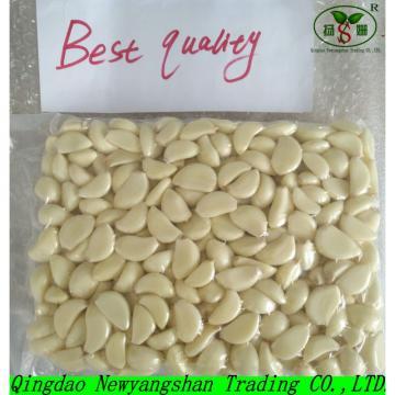 2017 2017 year china new crop garlic Fresh  GarlicPuree