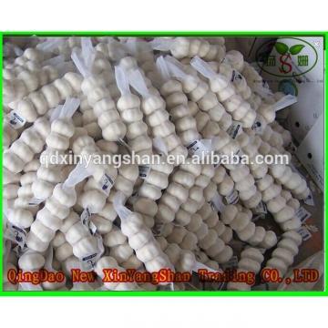 (HOT) 2017 year china new crop garlic Fresh  white  garlic  specification  more than 5 cm/GARLIC