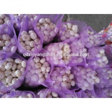 Fresh 2017 year china new crop garlic Garlic  For  Sale  China  Garlic Packing In Mesh Bag