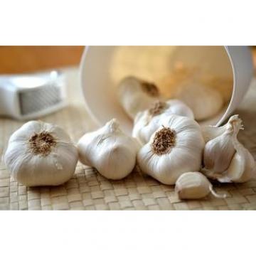 2017 2017 year china new crop garlic normal  white  fresh  garlic  with good price