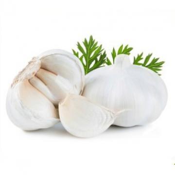 Laiwu 2017 year china new crop garlic natural  white  fresh  garlic  with mesh bag carton