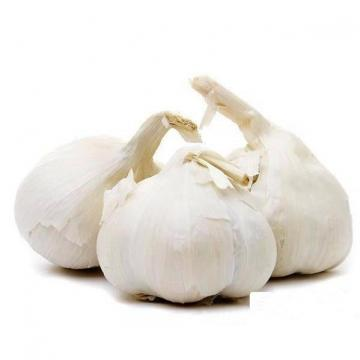 2017 2017 year china new crop garlic hot  sale  normal  white  fresh garlic