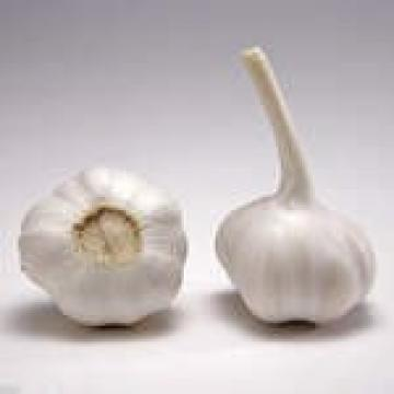 Chinese 2017 year china new crop garlic normal  white  fresh  garlic