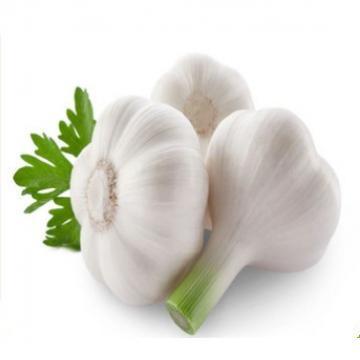Hot 2017 year china new crop garlic sale  fresh  Chinese  pure  normal white garlic supplier price