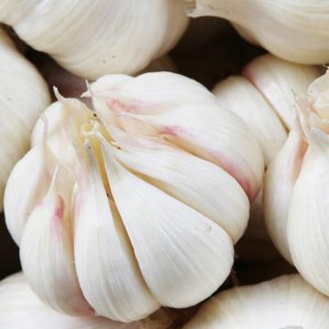 2017 2017 year china new crop garlic fresh  5.5  natural  white  garlic