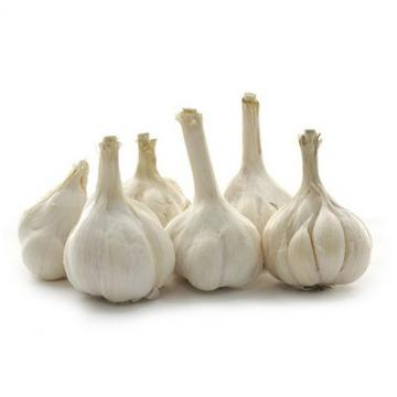 Wholesale 2017 year china new crop garlic 2017  normal  white  fresh  garlic with mesh bag or ctn