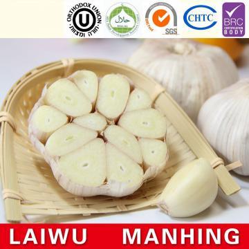 Chinese 2017 year china new crop garlic normal  white  fresh  garlic  mesh bag carton