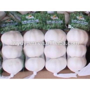 YUYUAN 2017 year china new crop garlic brand  hot  sail  fresh  garlic garlic grading machine