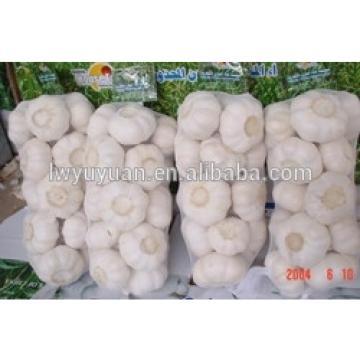 YUYUAN 2017 year china new crop garlic brand  hot  sail  fresh  garlic garlic packaging