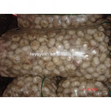 YUYUAN 2017 year china new crop garlic brand  hot  sail  fresh  garlic garlic health capsules