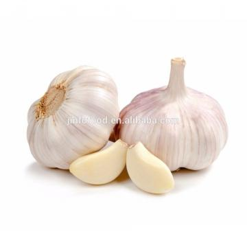 New 2017 year china new crop garlic crop  normal  white  garlic
