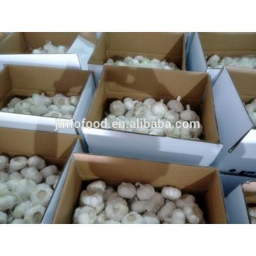 fresh 2017 year china new crop garlic pure  white  garlic
