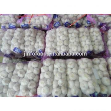 New 2017 year china new crop garlic garlic