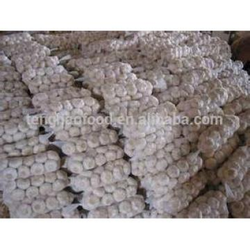 New 2017 year china new crop garlic Crop  5cm-6.5cm  pure  white  and normal white fresh garlic