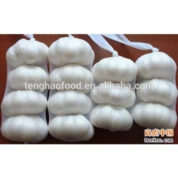 fresh 2017 year china new crop garlic nomal  &  pure  whiet  garlic