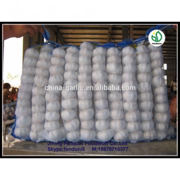 2017 wholesale garlic wholesale garlic buyers wholesale garlic price