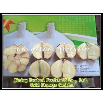 Chinese fresh peeled garlic, vacuum packed peeled garlic cloves