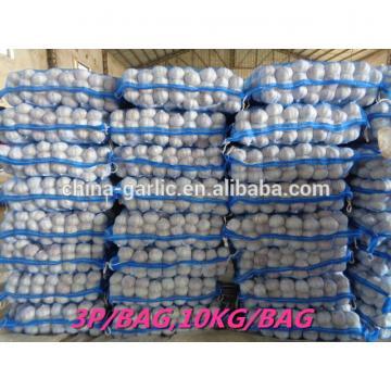 chinese supplier 50mm+ Fresh Garlic to global market
