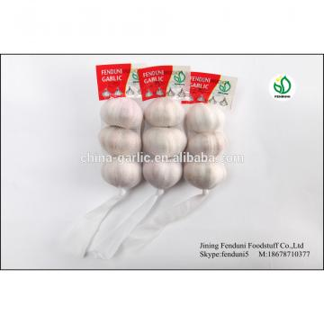 fresh chinese 3p pure white garlic in hot sale new crop 2017