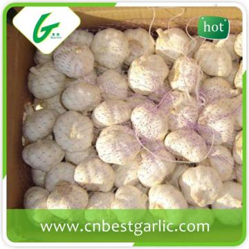 5.5cm white eatable quality bulk fresh garlic