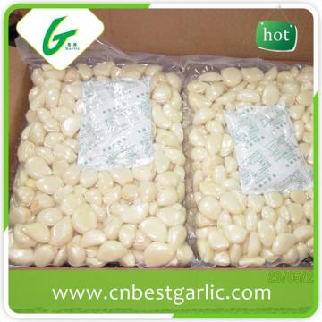 Single clove fresh peeled garlic