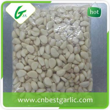 Wholesale fresh peeled garlic price