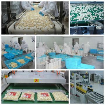 Exporter of Peeled Garlic Vacuum Pack