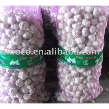 Chinese Garlic