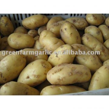 Chinese fresh potato