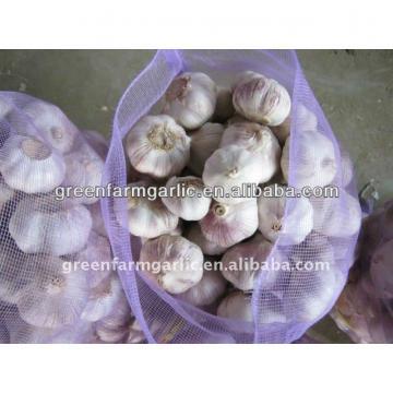 2014 chinese fresh garlic