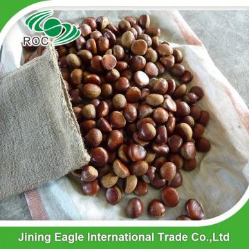 Hot sale high quality bulk sweet fresh chestnuts wholesale
