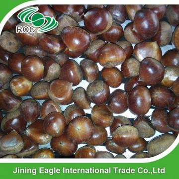 Wholesale organic yanshan fresh chestnut from china