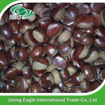 Chinese best pricing fresh raw organic chestnuts