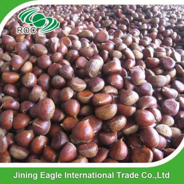 New crop Chinese fresh delicious chestnuts