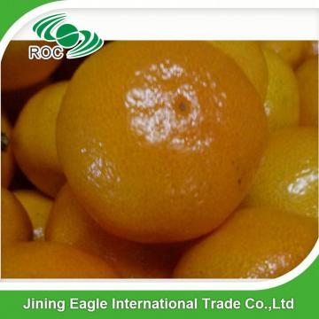 Sweet fresh nanfeng small Chinese baby mandarin orange