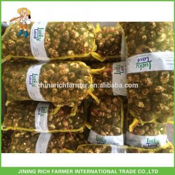 New Arrival China Fresh Taro Low Price High Quality