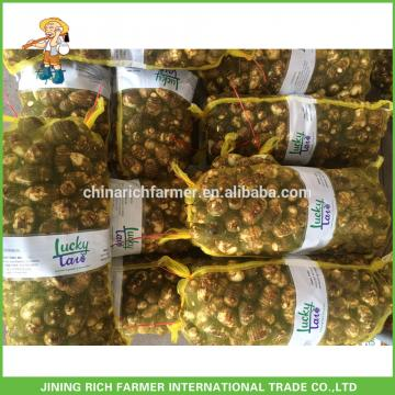 The Cheapest Price of Fresh Taro From China ----High Quality