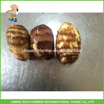 Taro Buyers, Fresh Taro, Dried Taro