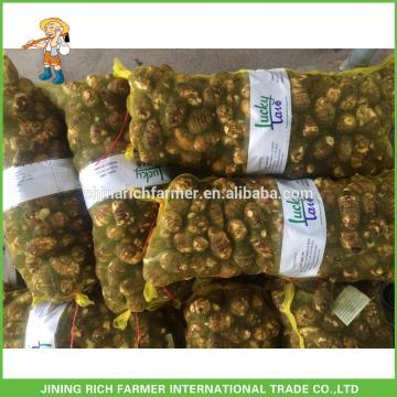 2017 New Crop Good Quality Fresh Taro Price