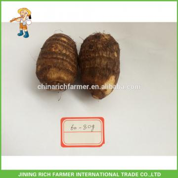 The Most Competitive Price Of Fresh Taro
