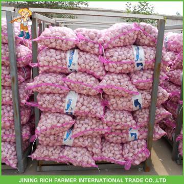 Good Price New Crop Fresh Red Garlic 5.0 CM In 10 KG Mesh Bag For Lebanon