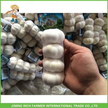 2017 Hot Sale Fresh Pure White Garlic 5.0cm /4p In 10 kg Mesh Bag For Sultan