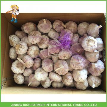 2017New Crop Fresh Normal White Garlic 5.0 cm In 20 kg Mesh Bag For Ecuador