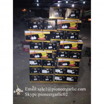 2017 New Crop 5cm Normal White Fresh Garlic 10kg Box Packing