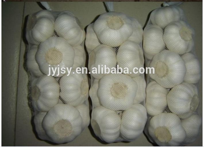 Chinese garlic for 2017