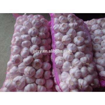 China 2017 Jinxiang Fresh Garlic,garlic Factory