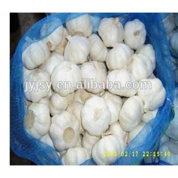 2017 year garlic from china