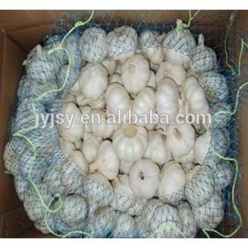 2017 garlic from jinxiang shandong China