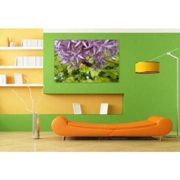 Stunning Poster Wall Art Decor Garlic Bourdon Flower Bee Macro 36x24 Inches