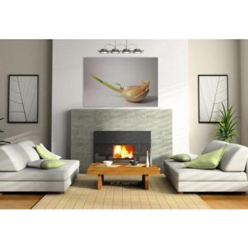Stunning Poster Wall Art Decor Food Garlic 36x24 Inches